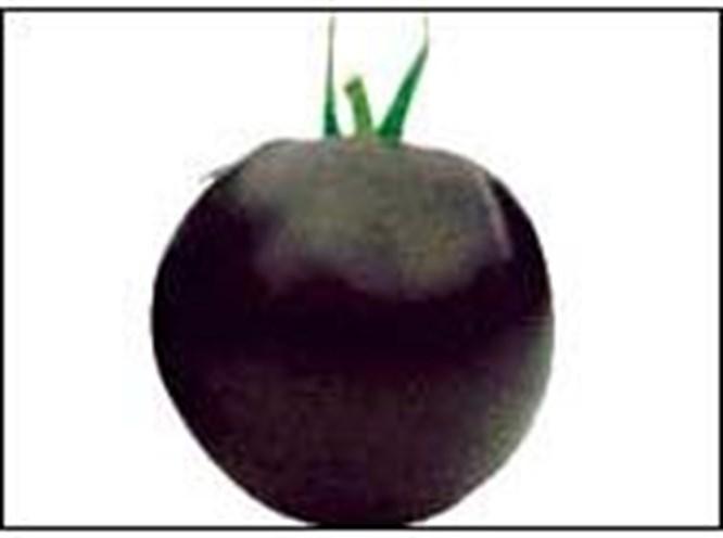 Siyah afrodizyak domatesler